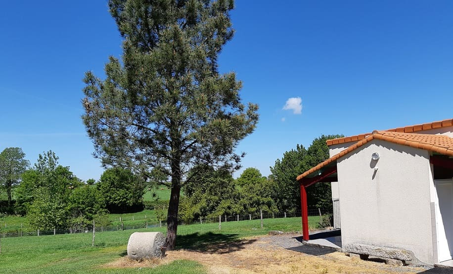 chanverrie camping vendee ferme